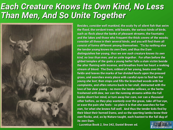 """Each Creature Knows Its Own Kind...."""