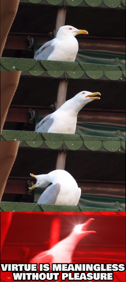 Inhaling Seagull Against Virtue Alone
